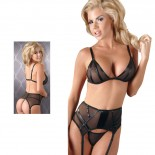 Cottelli Collection <br />