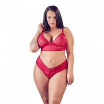 Cottelli Collection Lace Bra And Briefs Plus Size