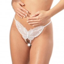 Cottelli