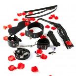 BDSM<br /> Starter Kit