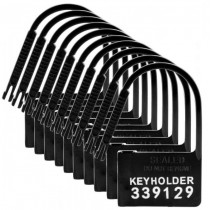 10 Pack of Locks